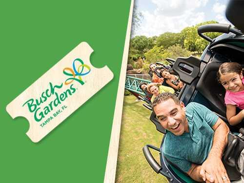 Ingresso Busch Gardens Tampa 1 Dia - 1 Park Ticket