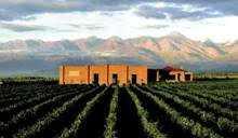 Rota do Vinho: Buenos Aires e Mendoza