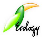 ECOLOGY PASSAGENS E TURISMO LTDA